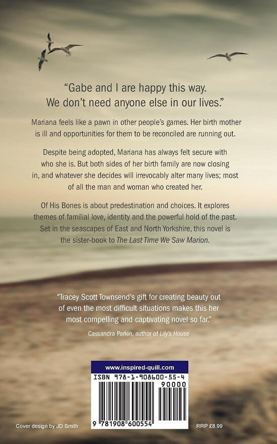 Back cover of magical realism literary novel Of His Bones (by Tracey Scott-Townsend)