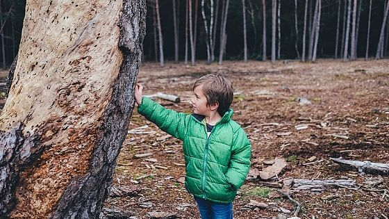 A young boy in a green coat supporting an old tree with an outstretched arm