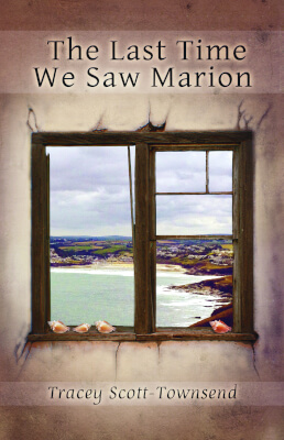 Literary fiction book cover for The Last Time We Saw Marion (by Tracey Scott-Townsend)